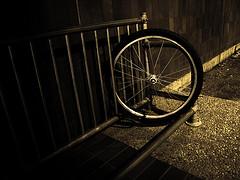 A bike wheel locked to a bike rack.