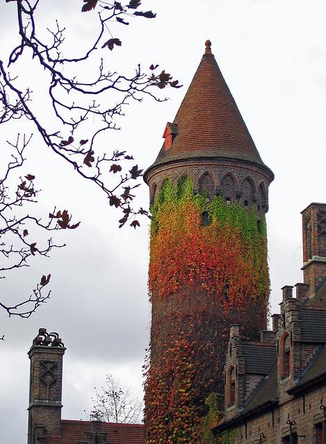 Ivy Tower, Bruges, Belgium