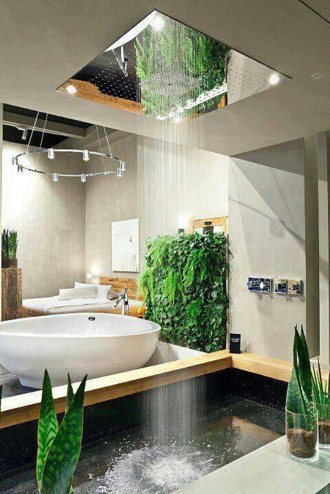 Interior rain shower