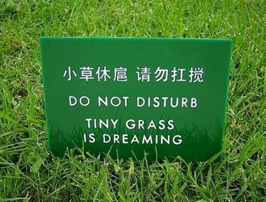 Ph'nglui mglw'nafh tiny grass China wgah'nagl fhtagn.