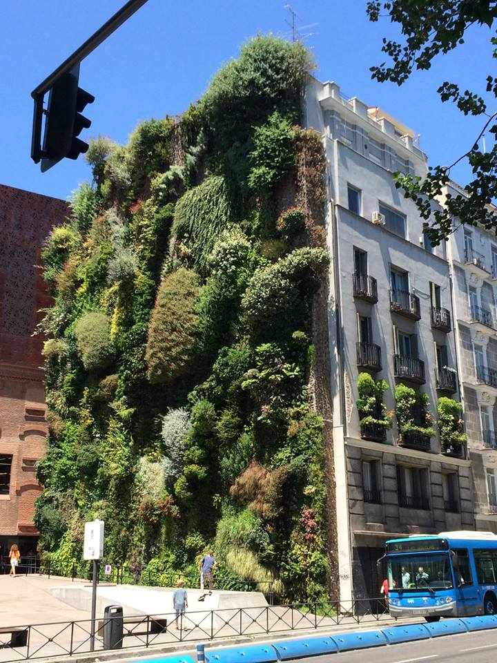 Building in Madrid with plants on it