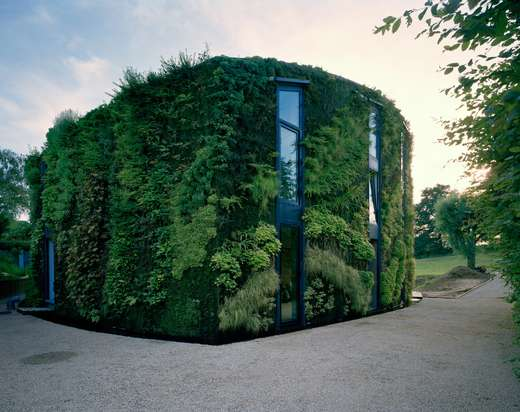 House in Brussels with Plants on It.